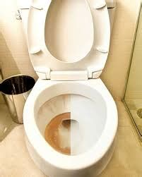 Blog   How To Remove Toilet Bowl Stains   Envirocare Systems
