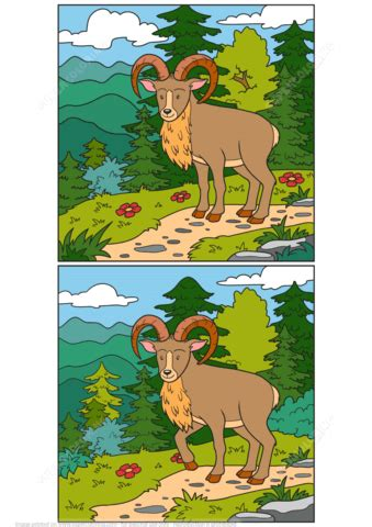 Find 12 Differences Between 2 Pictures of Urial Wild Sheep