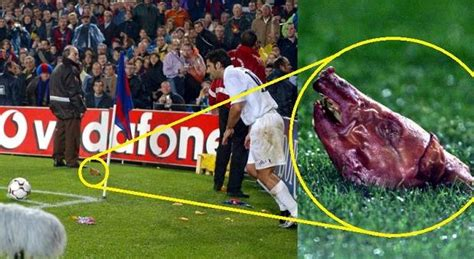 5 bizarre things thrown on the football pitch - Footy Jokes